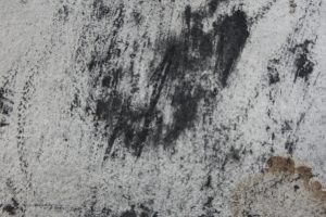 portrait, detail, 50 x 65 cm, charcoal on paper