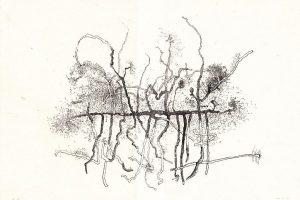 horizontale-lijn