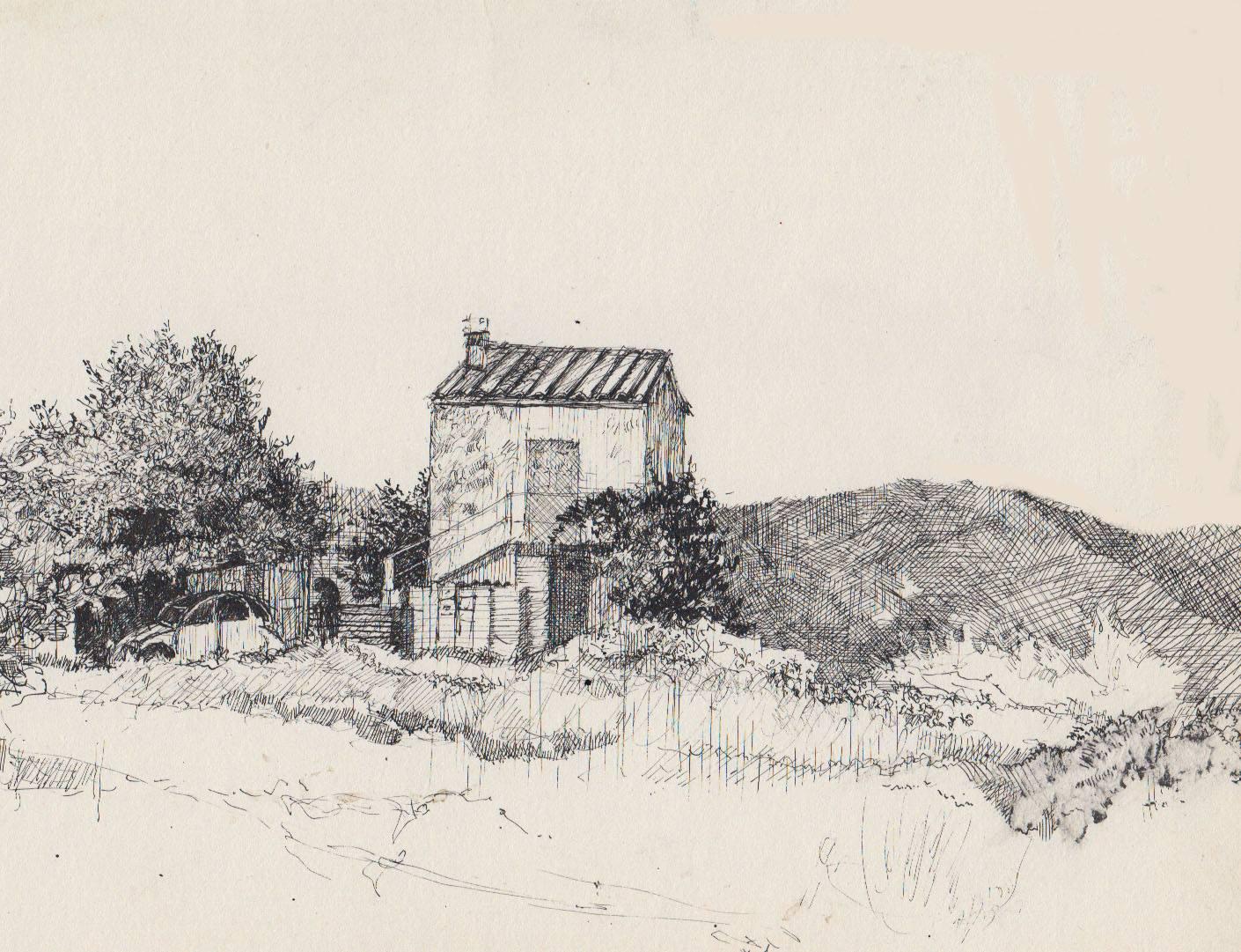 landschap2
