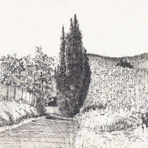 landschap4